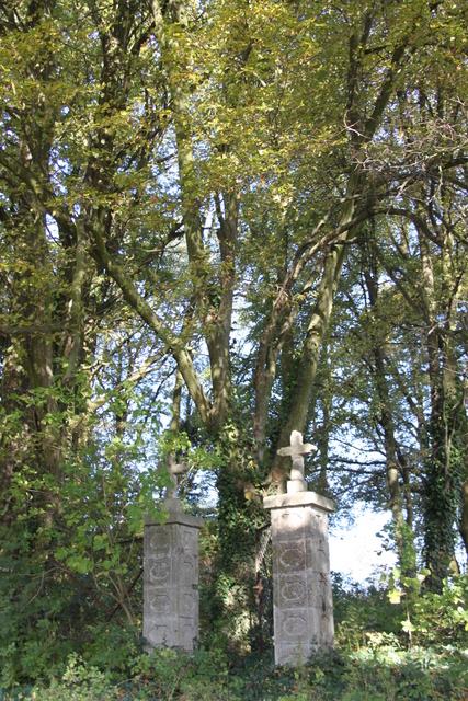 2 Pozostałości po cmentarzu niemieckim.jpeg